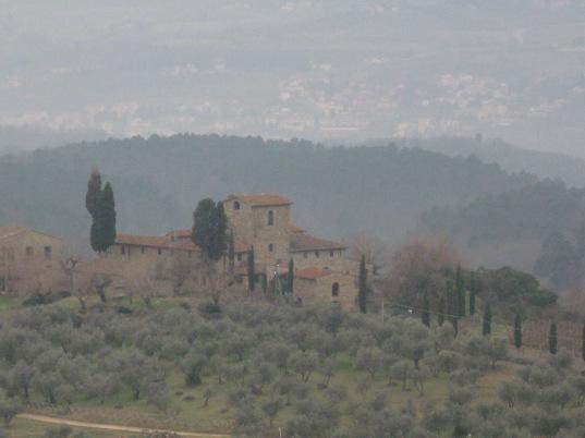 Olivi e vecchi cascinali