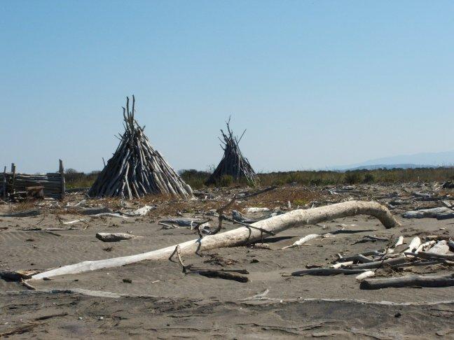 Principina spiaggia dei tronchi