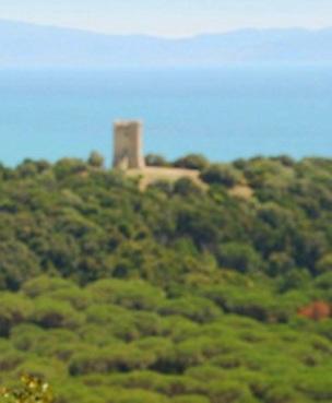 La torre della bella Marsilia