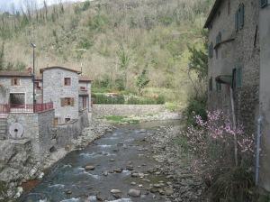 Il fiume Pescia nella val di Forfora