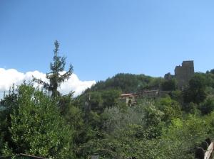 Il castello e il paesaggio circostante