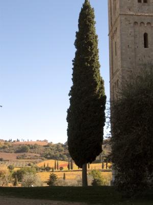 Il campanile e il paesaggio