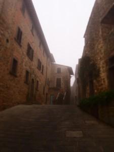 Volpaia strade e palazzi