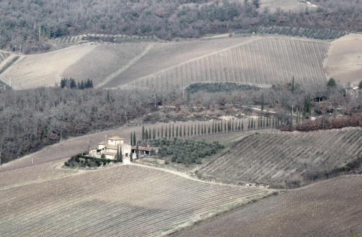 Il bel paesaggio toscano: campi coltivati e coloniche, armonia tra natura e lavoro dell'uomo