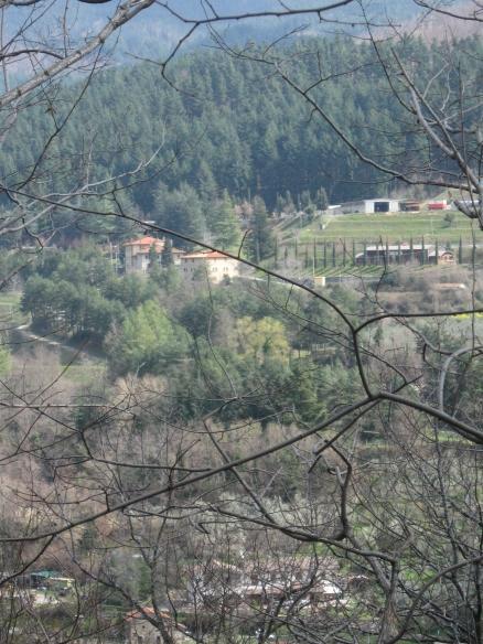 Uno scoeco della valle