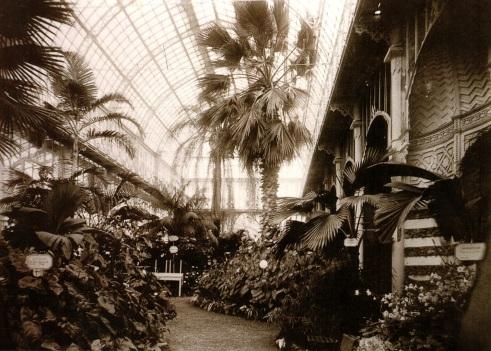 Firenze, tepidario Roster, Giardino dell'Orticoltura in una foto dell'Ottocento