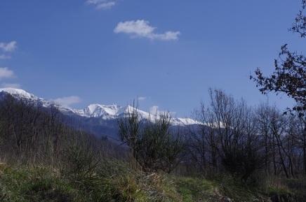 Panoramica sulle Apuane