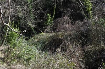Ponte sul torrente Bagnone