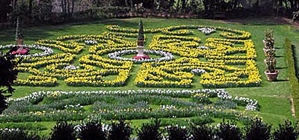 Villa Pescigola, il giardino dei narcisi