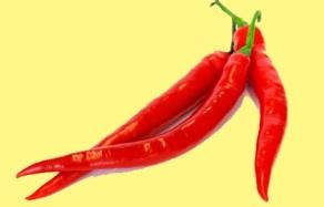 """Peperoncino piccante uno degli ingredienti """"aggiunti"""" nel tempo come il pomodoro"""