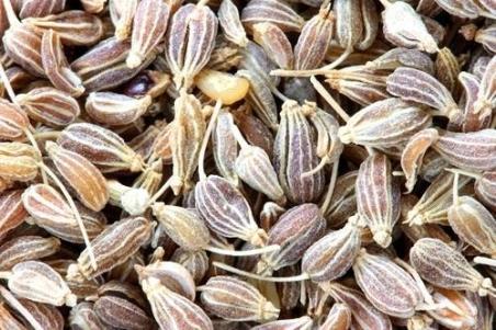 Semi di anice, uno degli ingredienti per i brigidini