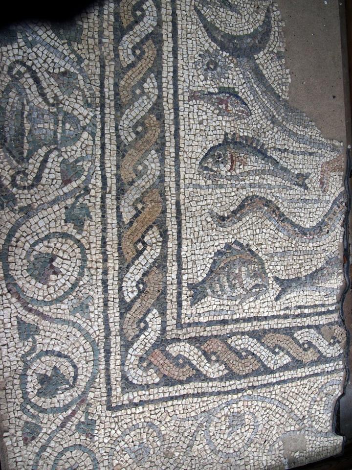 Le cornici del mosaico