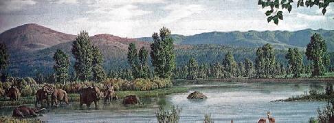 Ricostruzione di ambiente palustre del Valdarno in epoca preistorica