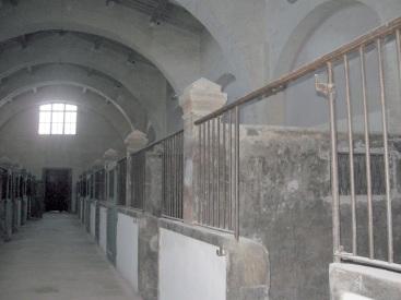Museo delle navi antiche di Pisa, la trasformazioni dei locale degli Arsenali medicei in stalle